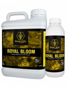 Royal Bloom 1L